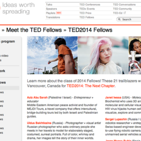 Ted Fellowship 2014